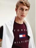 Tommy Hilfiger Cotton Flag T-Shirt In Deep Burgundy - MW0MW14313